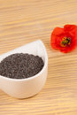 Poppy seeds natural condiment next to its flower Royalty Free Stock Image