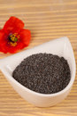 Poppy seeds natural condiment next to its flower Royalty Free Stock Images