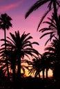 Por do sol em Palma de Majorca Fotografia de Stock