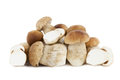 Porcini mushrooms on a pile isolated on white background Stock Image