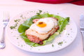 Pork chop with egg cheese Royalty Free Stock Image