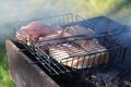 Pork chops on barbecue grill Royalty Free Stock Photo