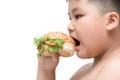 Pork hamburger on obese fat boy hand background isolated Royalty Free Stock Photo