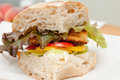 Pork schnitzel sandwich Stock Photography
