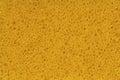 Sponge, Porouse foam texture background, bubble macro Royalty Free Stock Photo