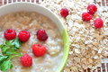 Porridge of oat-flakes with berries Royalty Free Stock Image