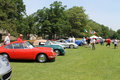 Porsche sports cars in a line up