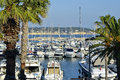 Port of bandol in france and palm trees commune the var department the provence alpes c te d azur region southeastern Stock Photos