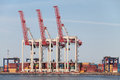 Port cranes in the seaport storage containers Royalty Free Stock Images