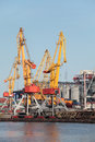 Port cranes in the seaport storage containers Royalty Free Stock Photography