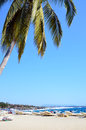Port escondido mexico palm tree fishing boats and pacific ocean spray at Stock Photo