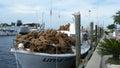 Port in tarpon springs florida Royalty Free Stock Image