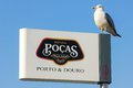 Port wine producers billboard porto portugal famous brand pocas and a seagull from a row of billboards on douro riverside in vila Royalty Free Stock Image