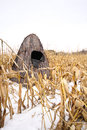 Portable hunting blind a camouflaged sits in a corn field during winter Stock Images