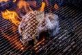 Porterhouse steak on the coals Royalty Free Stock Photo