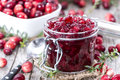 Portion of cranberry jam with fresh fruits Royalty Free Stock Photos