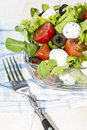 Portion of fresh tomato mozzarella salad and healthy Royalty Free Stock Images