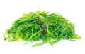 A portion of fresh wakame seaweed on white background Royalty Free Stock Images