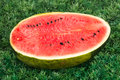 Portion Of Watermelon With Gre...