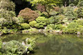 Portland japanese garden beautiful pond and bonsai in Royalty Free Stock Images