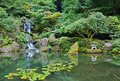 Portland japanese garden waterfall in Stock Photography