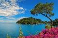 Portofino bay on Ligurian coast in Italy