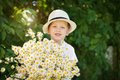Portrait adorable boy in a hat with big white bouquet of camomiles Royalty Free Stock Photo