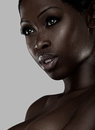 Portrait of an African beauty Stock Photos