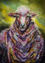 Portrait Art sheep with colorful wool coat