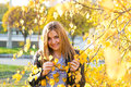Portrait of autumn woman with yellow leaves Stock Images