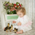 Portrait of a baby girl with down syndrome with ducklings Stock Image