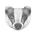 Portrait of Badger.