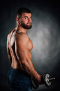 Portrait of a bearded man fitness model, torso. Dumbbell in hand, view from back. Gray background. Royalty Free Stock Photo