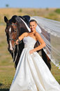 Portrait of beautiful bride with horse Stock Photo