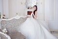 Portrait of beautiful laughing bride. Wedding dress with open back. Luxurious light interior Royalty Free Stock Photo