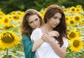 Portrait of a beautiful two happy young women with long hair in sunflowers field Royalty Free Stock Photos