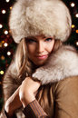 Portrait of a beautiful wealthy woman in winter Royalty Free Stock Photography