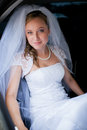 Portrait of a beautiful young bride Royalty Free Stock Images