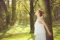 Portrait of a beautiful young bride standing in the fores horizontal forest Royalty Free Stock Image