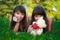 Portrait beautiful young twins sisters in a summer Royalty Free Stock Photos
