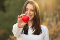Portrait of beautiful young woman holding red heart against forest Stock Photography