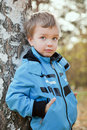 Portrait of  boy in blue jacket around birch. Stock Images