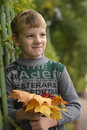 Portrait of boy child Royalty Free Stock Photo