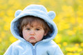 Portrait of a boy in spring flowers field cute Royalty Free Stock Images