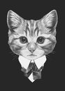 Portrait of Cat in suit.