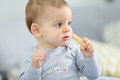 Portrait of cute baby boy eating biscuit Royalty Free Stock Photo
