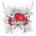 Portrait of deer with glasses, headphones and in hip-hop hat. Vector illustration.