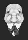 Portrait of Duck in suit. Royalty Free Stock Photo