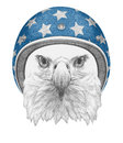 Portrait of Eagle with Helmet.
