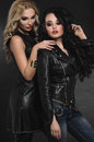 Portrait of Fashion women models in leather clothing